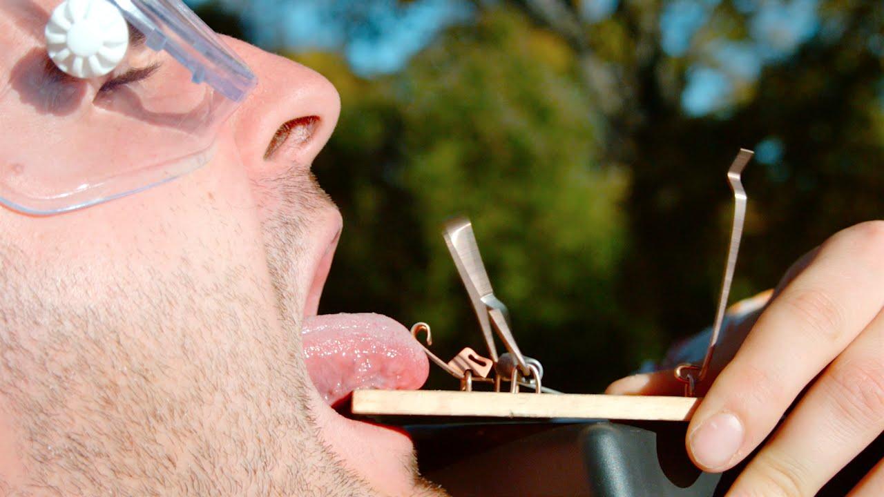lengua trampa ratones