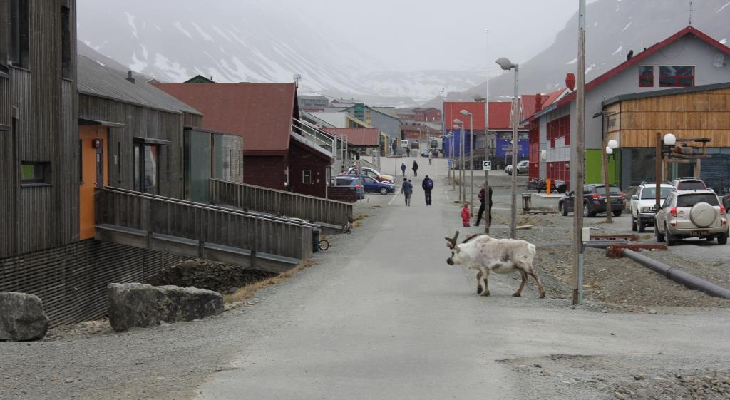 Longyearbyen 3