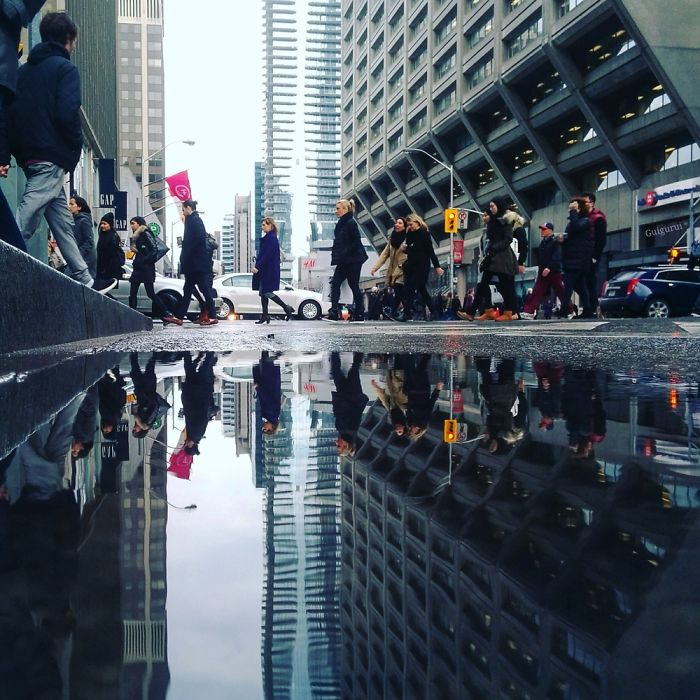 the-parallel-worlds-of-puddles-in-toronto-6__700