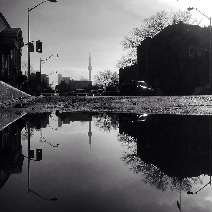 the-parallel-worlds-of-puddles-in-toronto-7__700