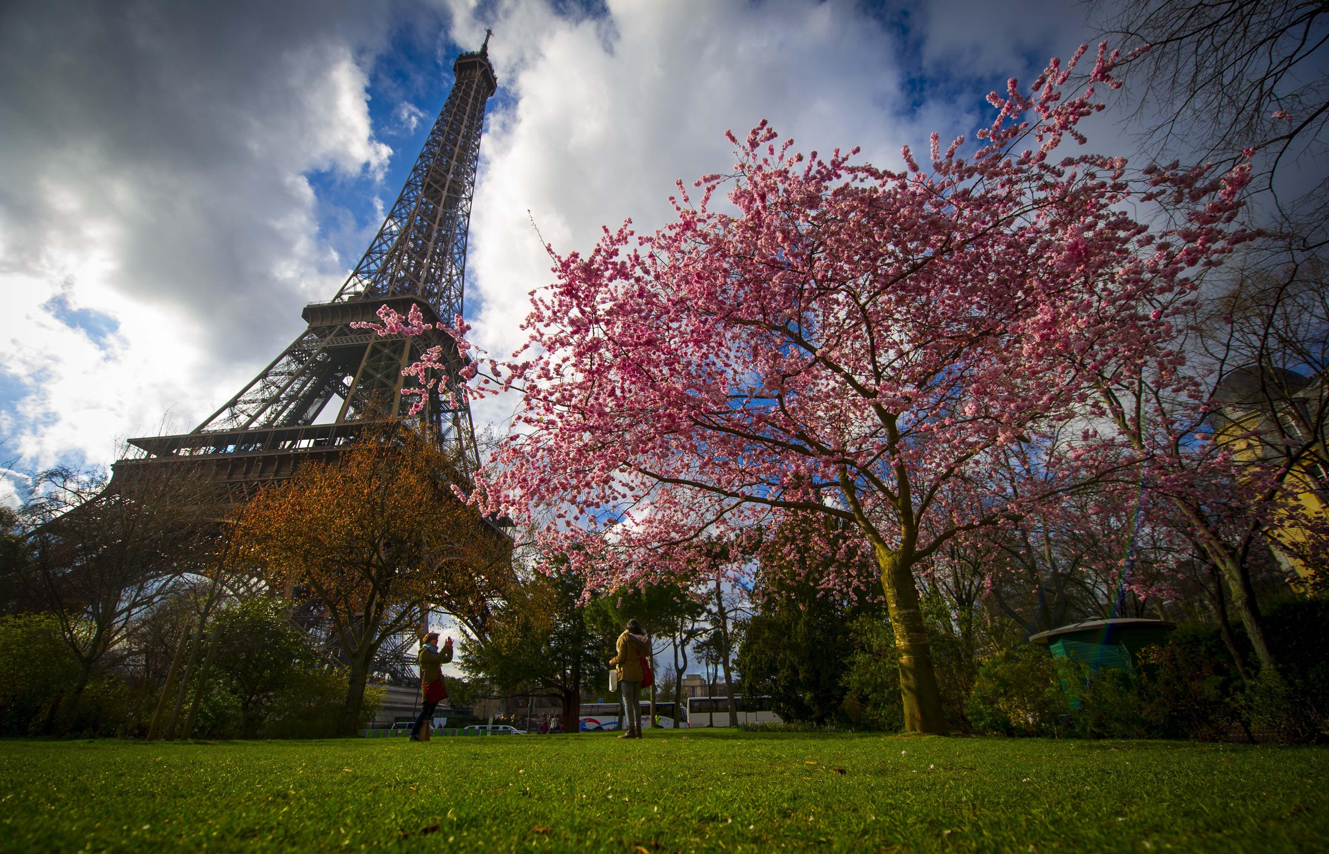 (2)FRANCIA-PARIS-MEDIO AMBIENTE-FLORA