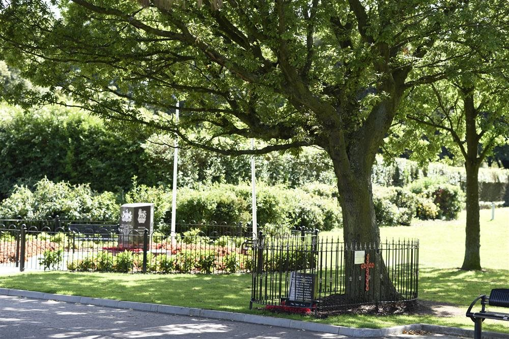 Árbol de la Paz, Irlanda del Norte, Reino Unido