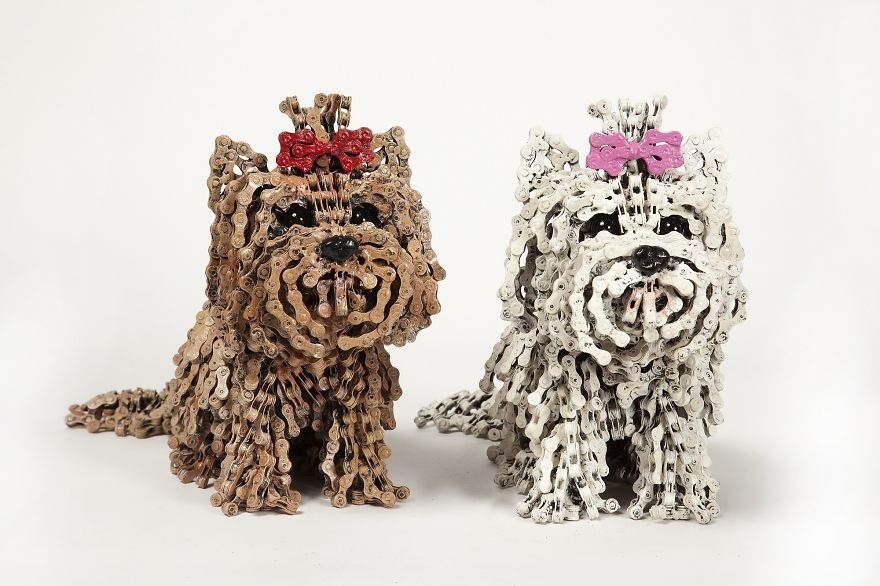 perros bicicletas (3)
