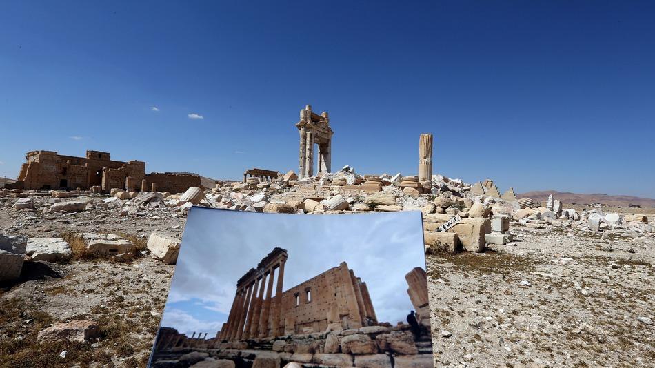 Palmira (3)