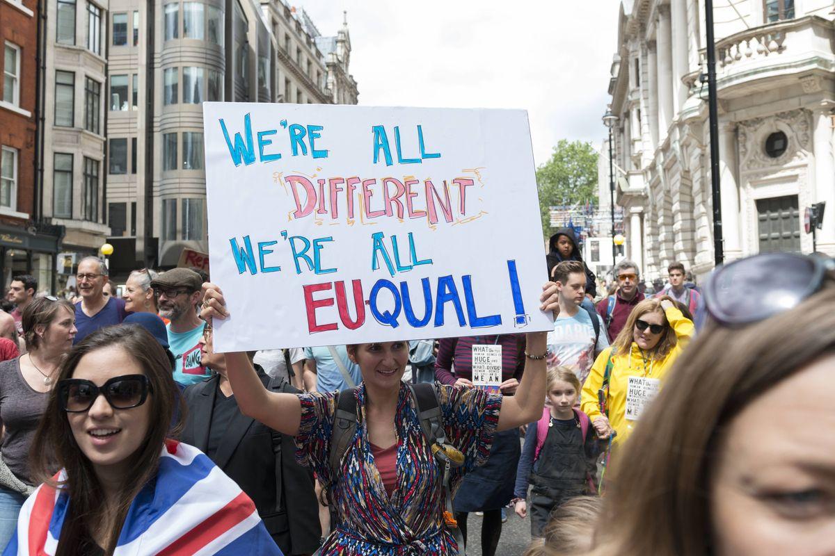 anti brexit 09