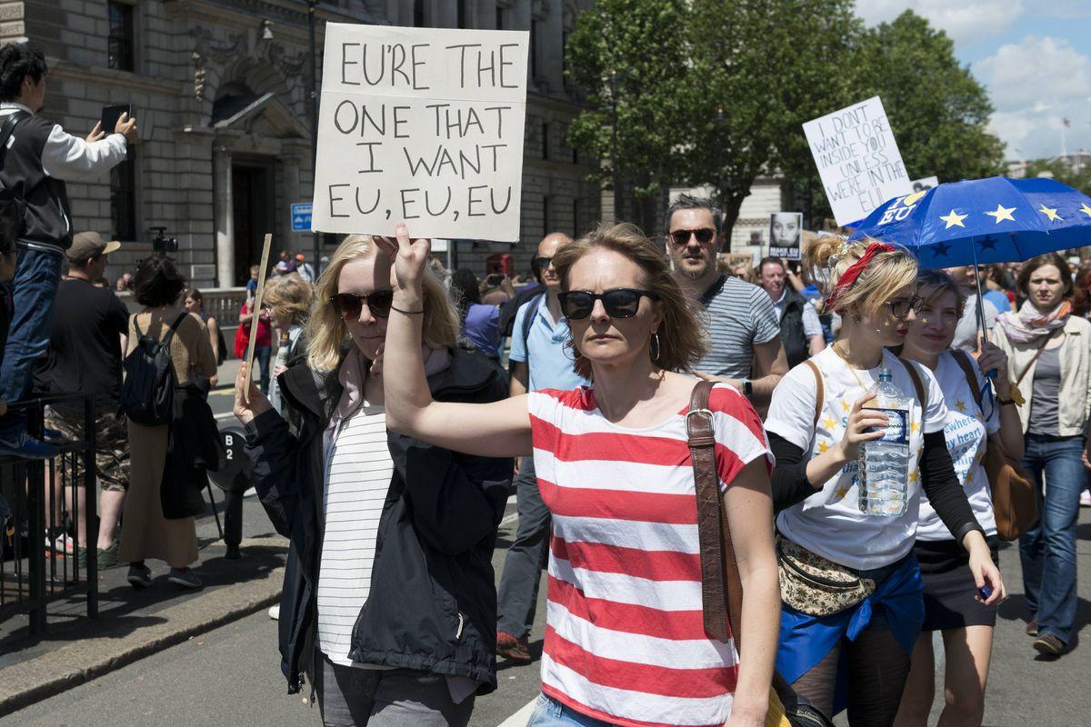 anti brexit 11