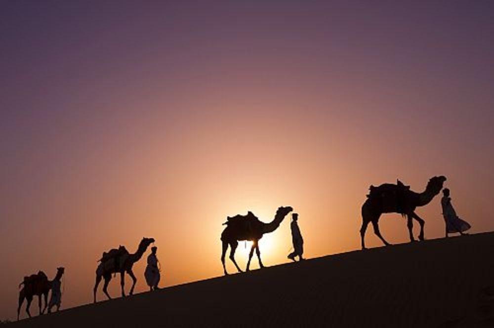 Desierto del Thar, Rajastán