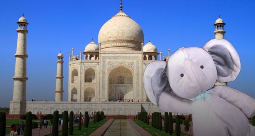 elefante por el mundo5