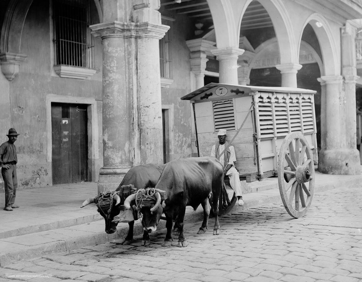 La Habana 08