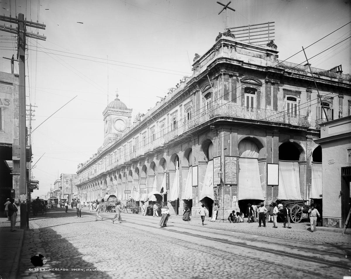 La Habana 15