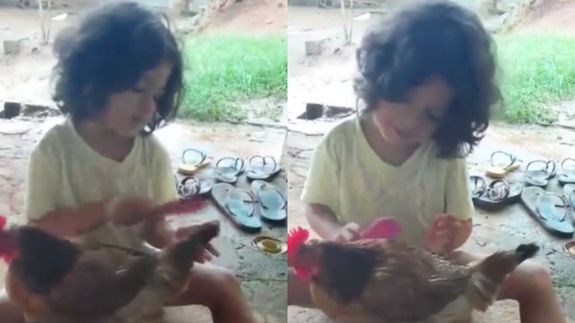 Little girl gives her pet chicken a glamorous makeover