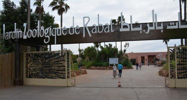 zoologico rabat marruecos