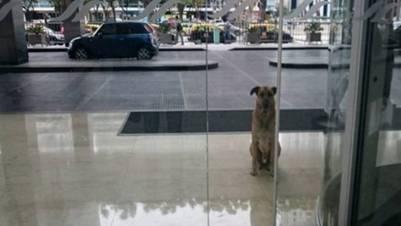 Rubio en la puerta del hotel Hilton, en Puerto Madero