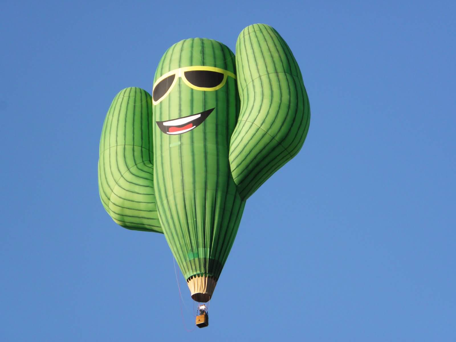 Cactus-Hot-Air-Balloon-At-Albuquerque-Balloon-Fiesta