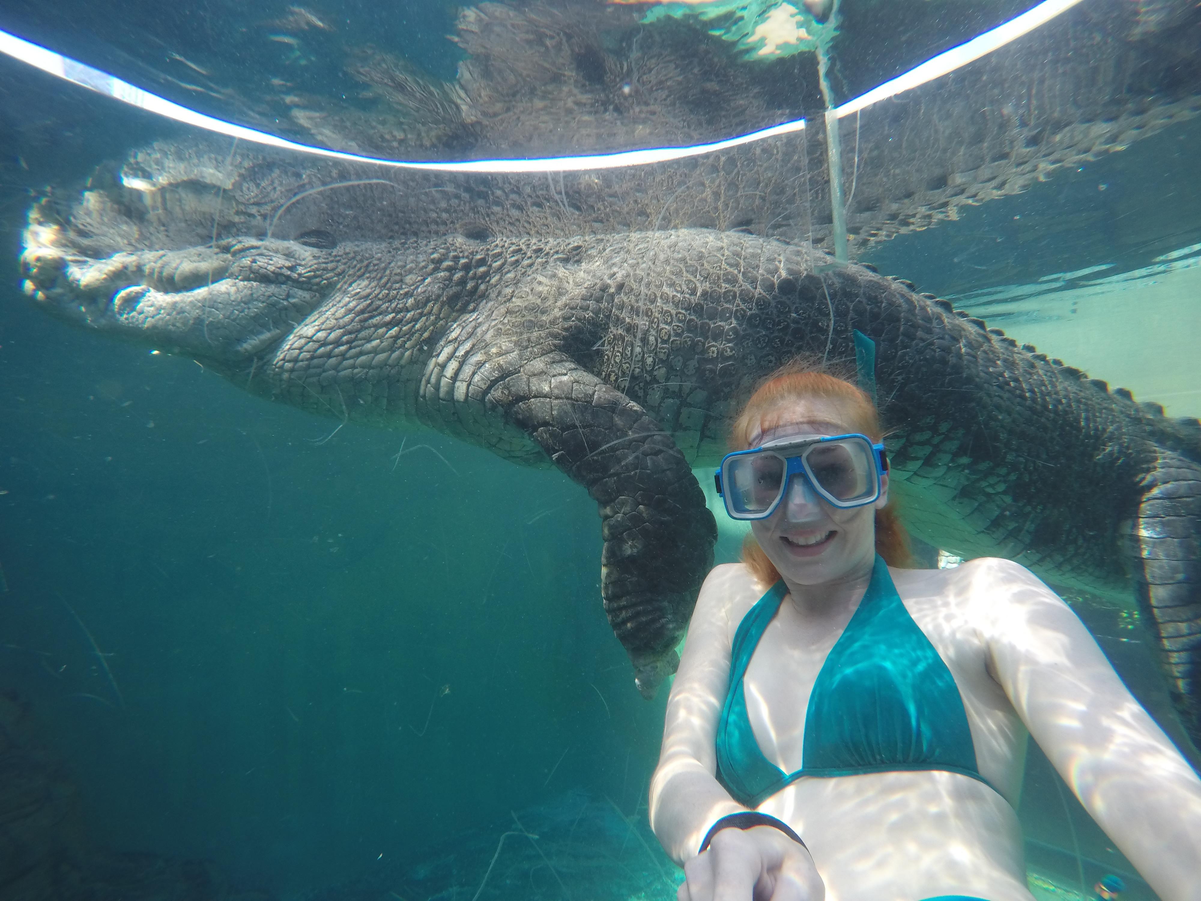 crocodile-croc-swim-adventure-thrill-darwin-crocos21