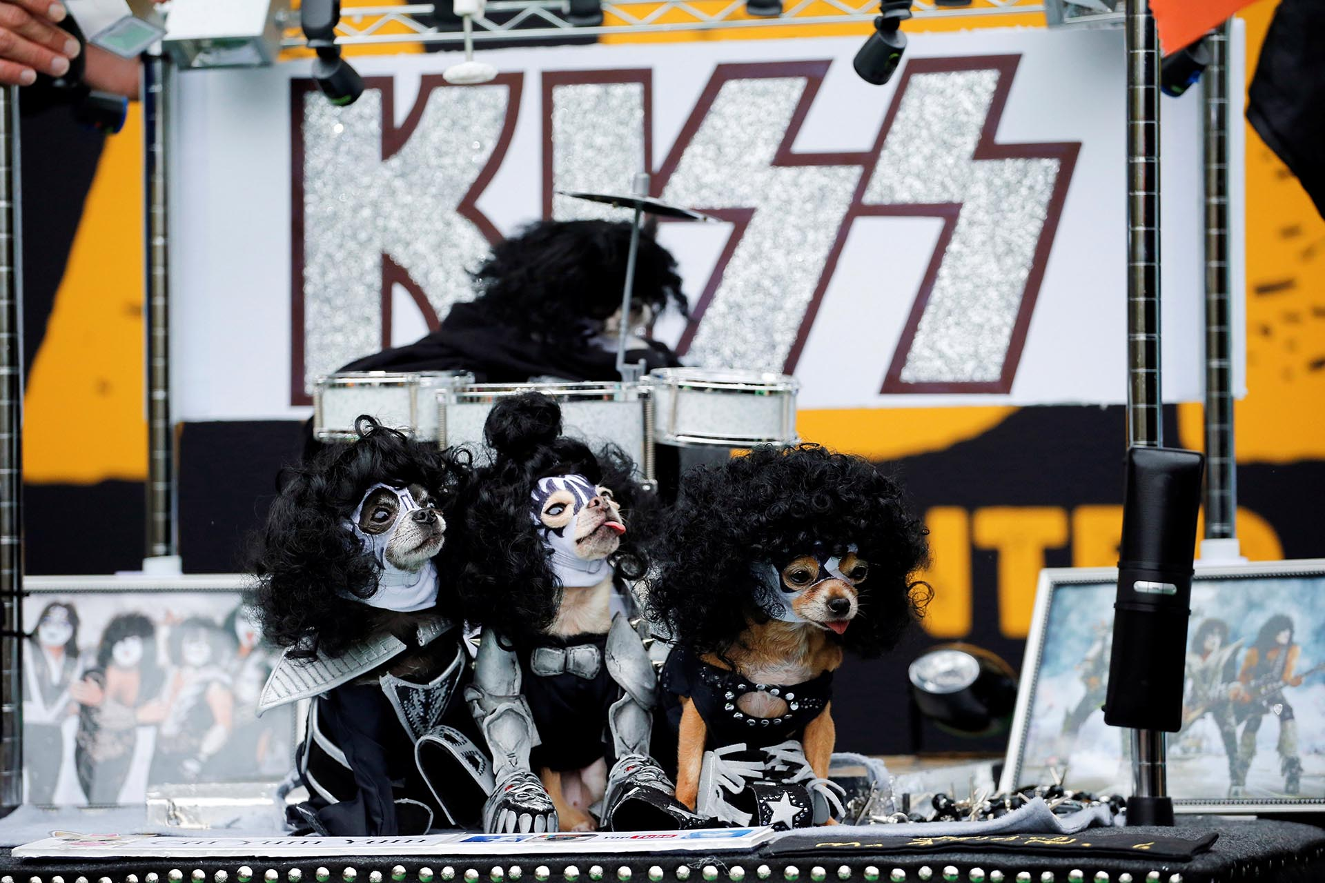 Dogs dressed up like the rock band Kiss take part during the annual halloween dog parade at Manhattan's Tompkins Square Park in New York