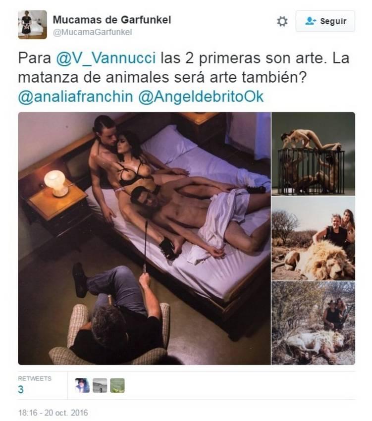 Matias-Garfunkel-Victoria-Vanucci-animales10