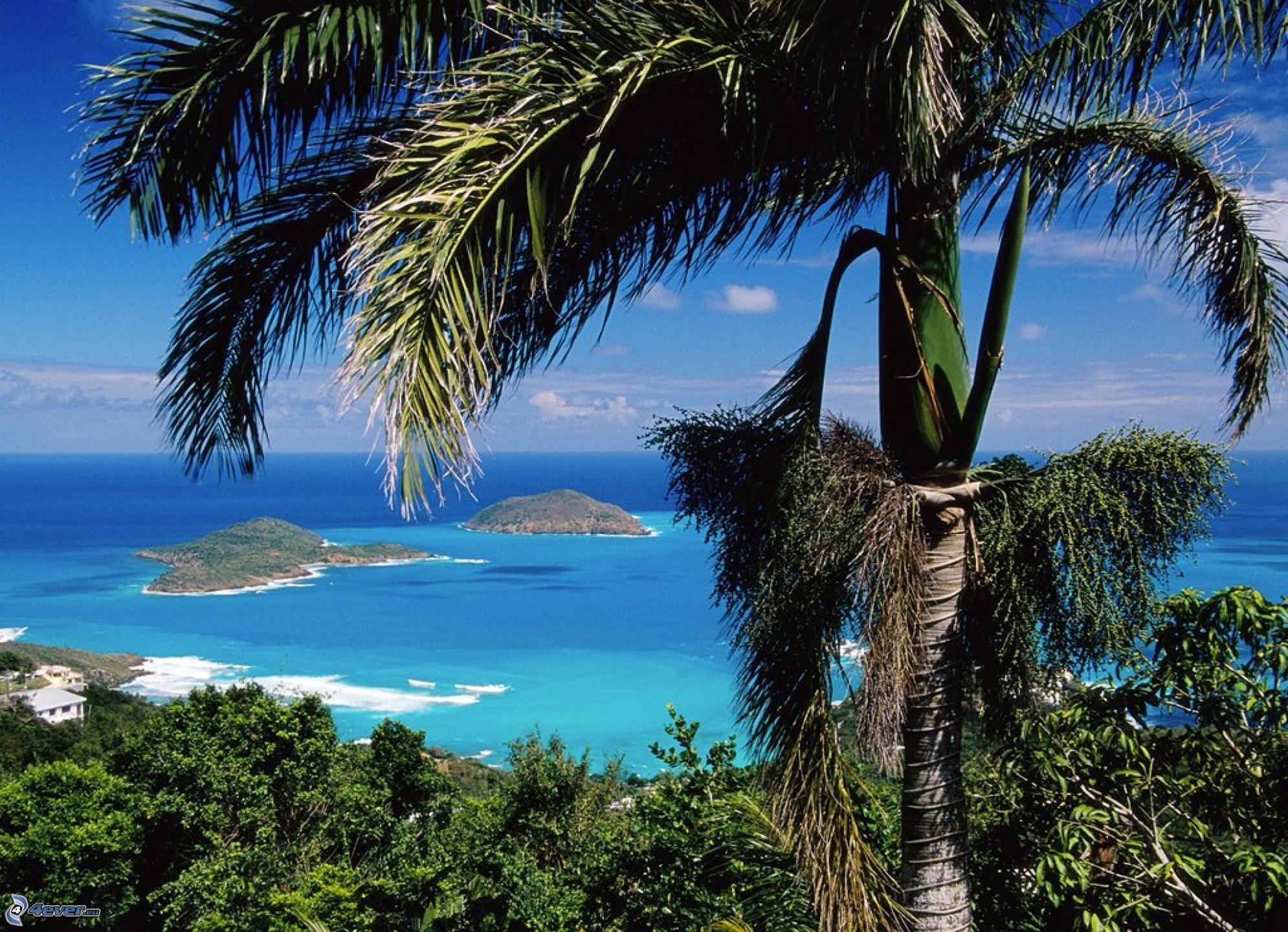 Santo Tomé y Príncipe (8.000 visitantes)