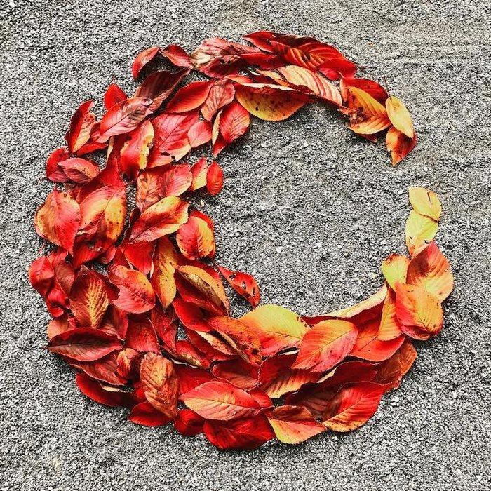 fallen-leaf-art-japan-7-585117cdcb141__700