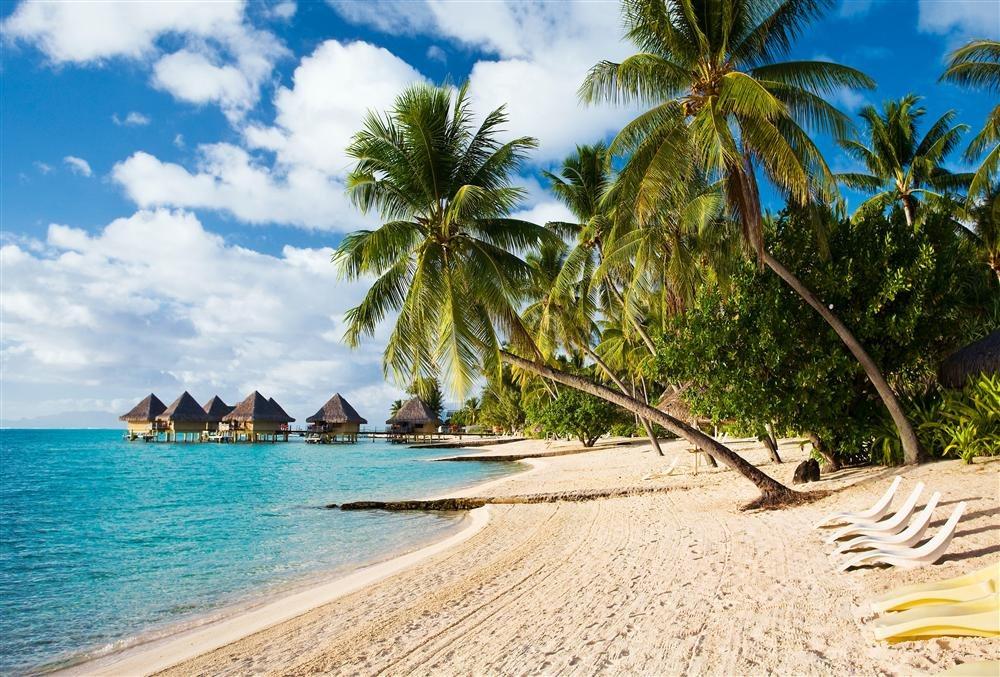 Bora Bora. Tahití y sus Isla: Ancladas en medio del océano, Tahití y sus Islas (territorio francés) guardan paraísos que han seducido a navegantes, exploradores y artistas de distintas épocas.