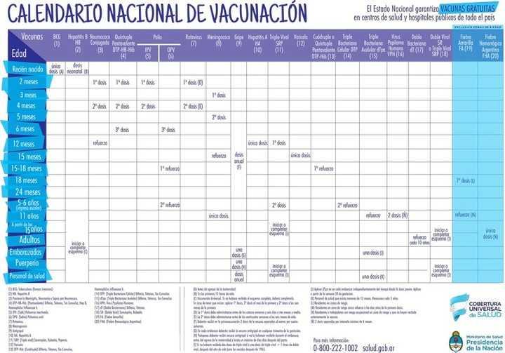 El calendario de vacunas actualizado.