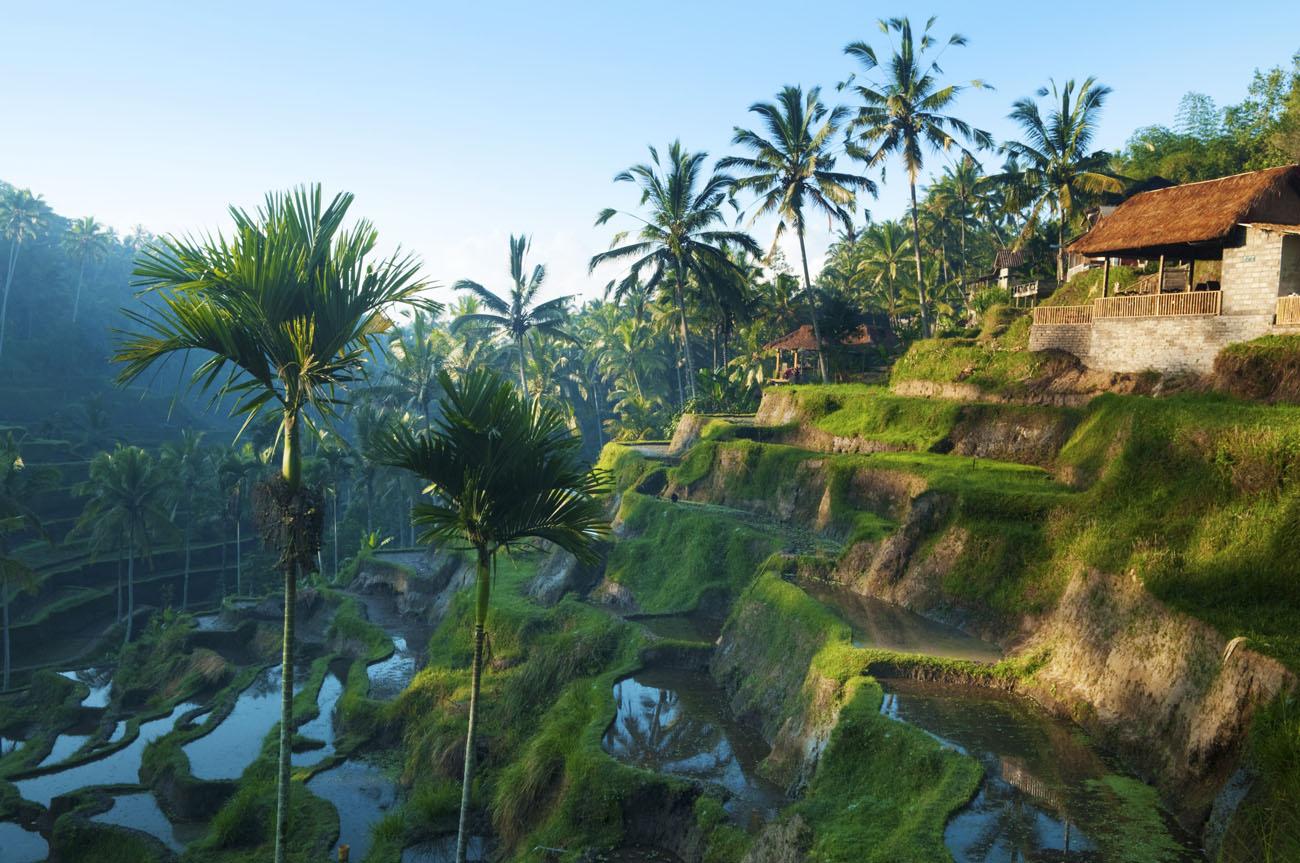 .La isla de Bali, en Indonesia, es la número uno. ¿Por qué será? Es posible que sean las playas de arena blanca como Lovina Beach, el verde intenso de sus selvas en el Parque Nacional de Bali Occidental, los antiguos templos (más de 10.000) o los diferentes senderos para hacer excursionismo. Alquila una moto para moverte por la isla: no dejes de ir al templo Tanah Lot para ver atardecer, piérdete por los arrozales de Jatiluwih o en Tegalalang, escoge playa o lago, visita algún volcán o, incluso, aprovecha para casarte