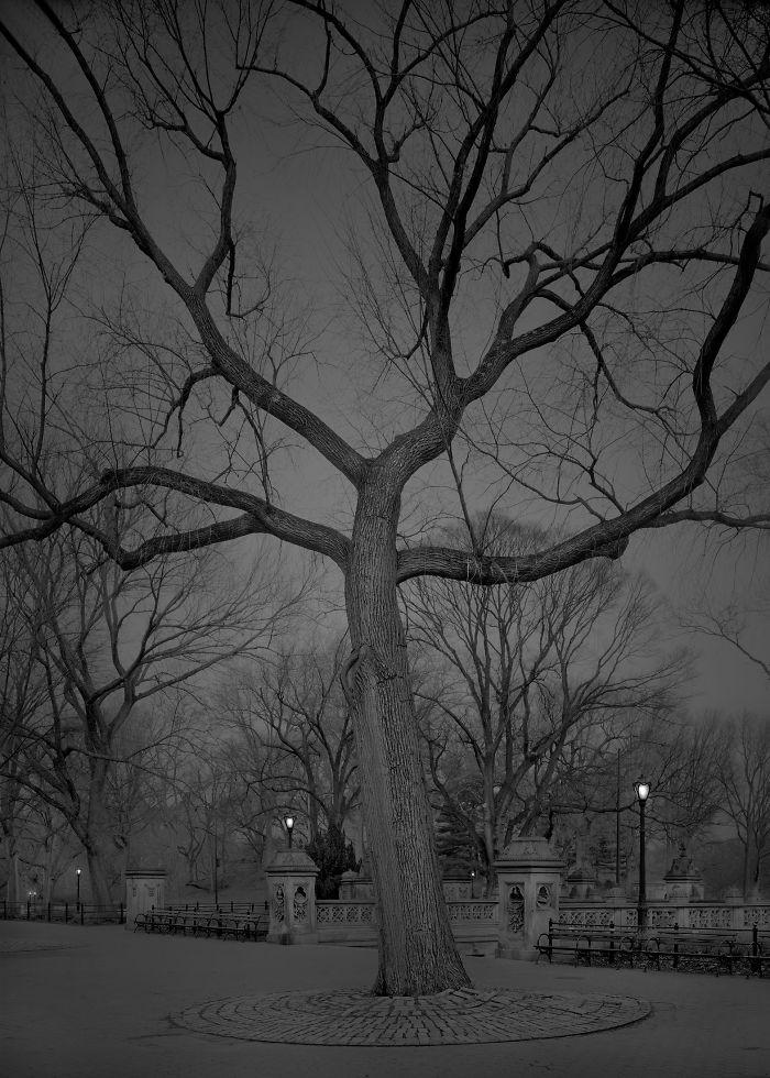 haunting-images-new-york-city-michael-massaia-28-5923dfa8752cc__700