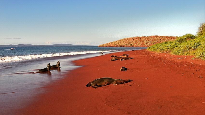 Playa de Rabida