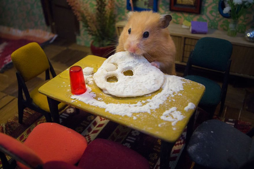 Crafted-miniature-town-for-HUNGRY-HUNGRY-HAMSTERS-online-series-5935d48660172__880