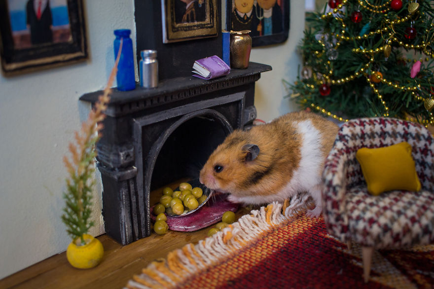 Crafted-miniature-town-for-HUNGRY-HUNGRY-HAMSTERS-online-series-5935d4d50373c__880