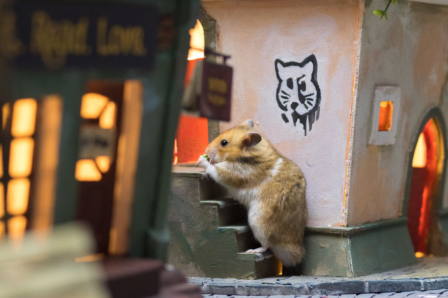 Crafted-miniature-town-for-HUNGRY-HUNGRY-HAMSTERS-online-series-5935d4fee0a68__880