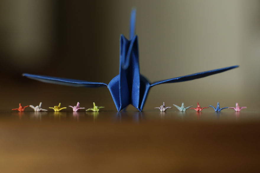 I-made-a-tiny-origami-crane-with-just-my-fingers-and-the-internet-loved-it-594c389b7ed3d__880