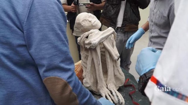 momia extraterrestre1