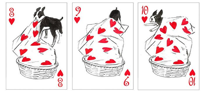pack-of-dogs-playing-cards-john-littleboy-17