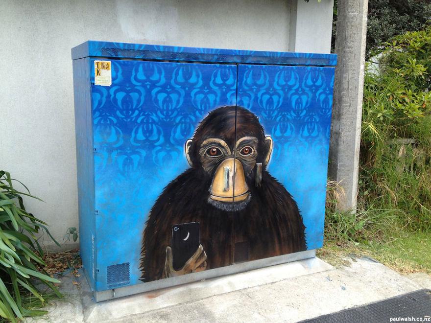 chimp_selfie__880