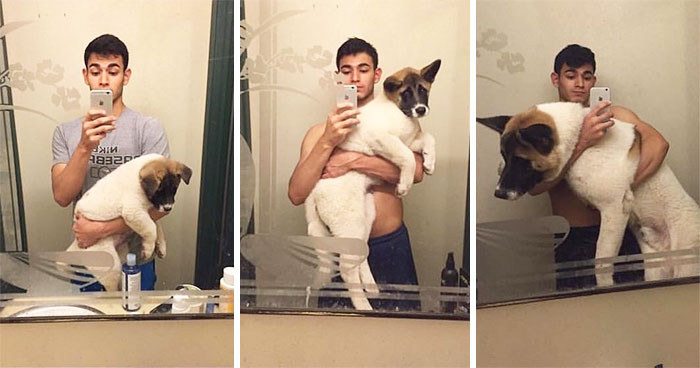 dogs-growing-up-before-after-22-594b6f5e9c67d__700