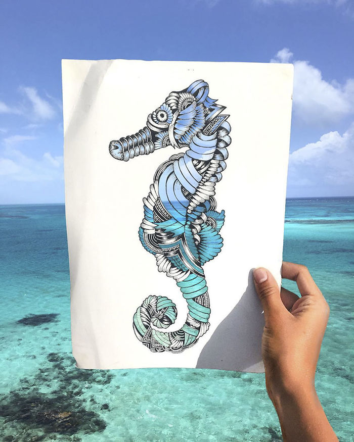 intricate-animal-drawings-faye-halliday-24-59538d06e5da3__700
