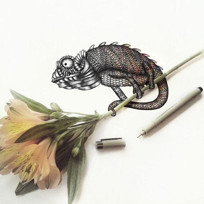 intricate-animal-drawings-faye-halliday-28-5953984b1685e__700