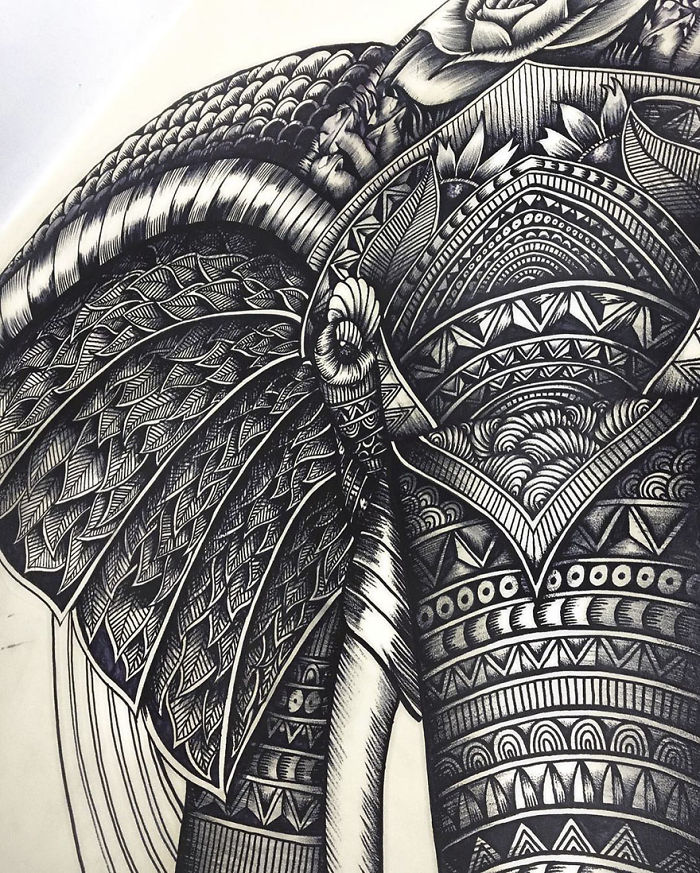 intricate-animal-drawings-faye-halliday-46-595390644fc34__700