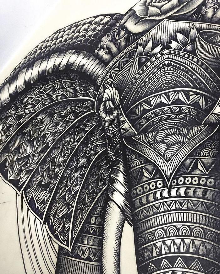 intricate-animal-drawings-faye-halliday-46-595390644fc34__700