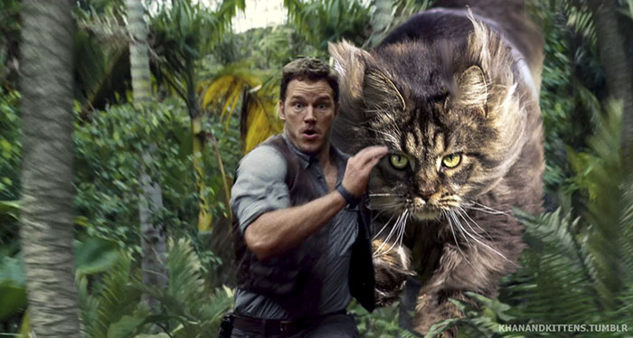 jurassic-park-dinosaurs-replaced-with-cats-13-5978350de48b2__700