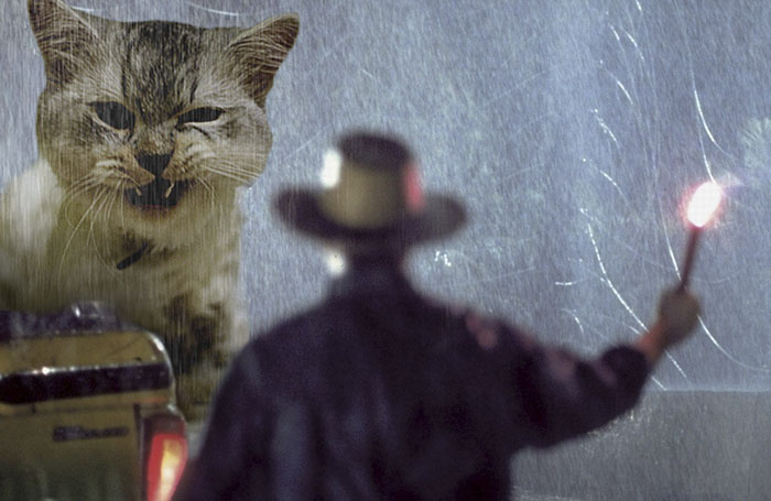 jurassic-park-dinosaurs-replaced-with-cats-16-5978351341fe8__700