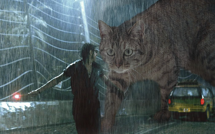 jurassic-park-dinosaurs-replaced-with-cats-17-597835151c77c__700