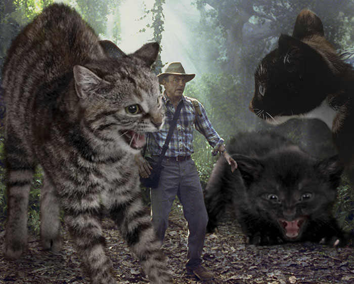 jurassic-park-dinosaurs-replaced-with-cats-19-59783518dd72a__700