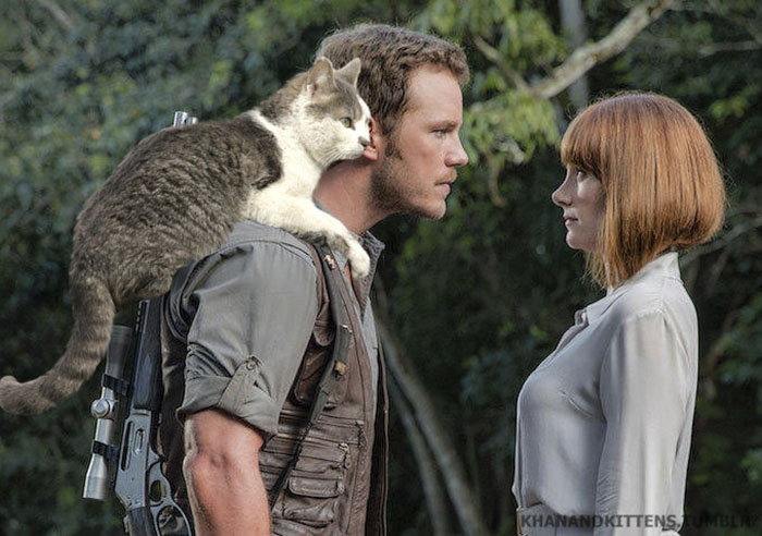 jurassic-park-dinosaurs-replaced-with-cats-5-597834fbebe18__700