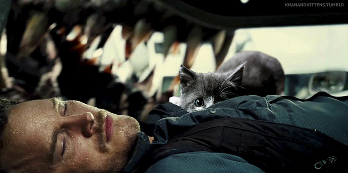 jurassic-park-dinosaurs-replaced-with-cats-8-59783502c9e07__700