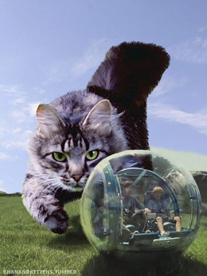 jurassic-park-dinosaurs-replaced-with-cats-9-59783504e34ea__700