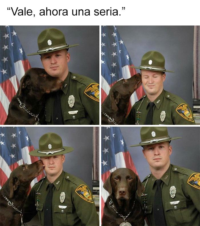 memes-perros-8-5909fc0008fae__700
