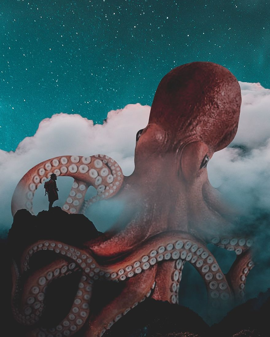 octopus-5970c80c6ec35__880