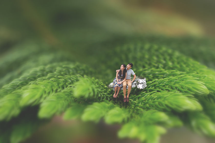 Pre-wedding_Miniature-2-595ba158601c4__880